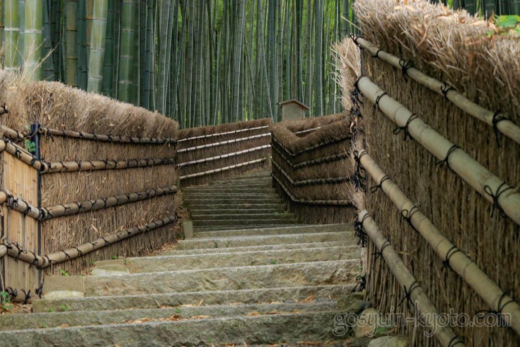 京都市右京区の化野念仏寺の竹林