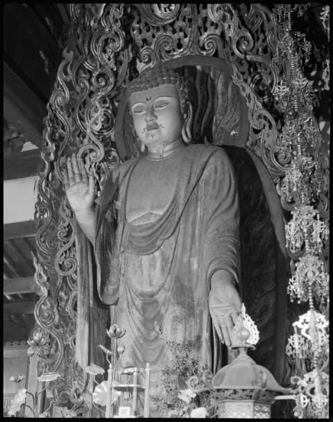 京都市東山区の戒光寺の釈迦如来