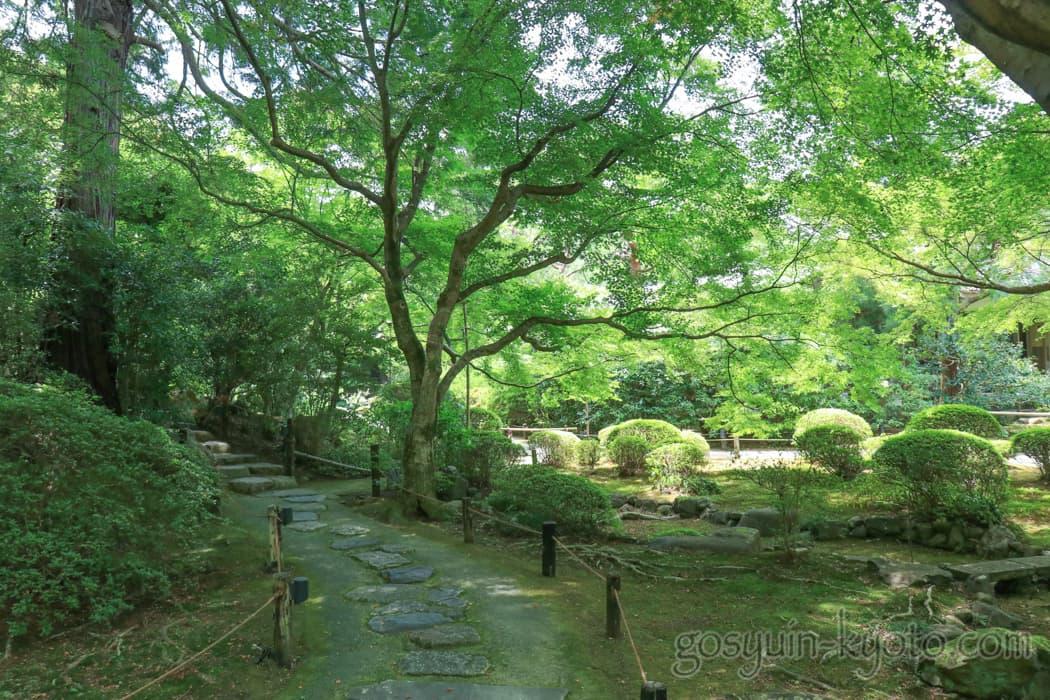 京都市東山区の青蓮院の庭園