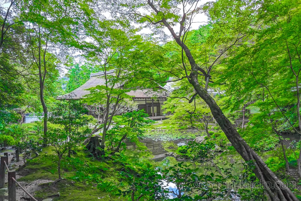 京都市左京区の南禅院の庭園