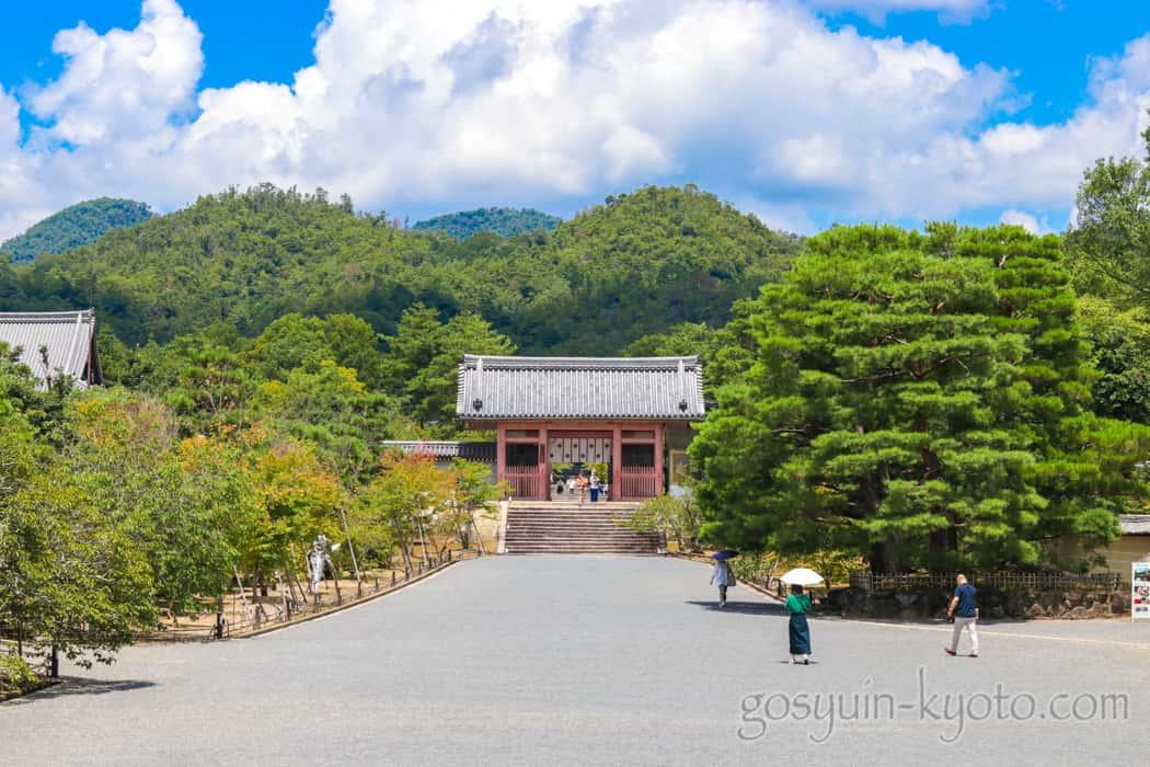 仁和寺の境内