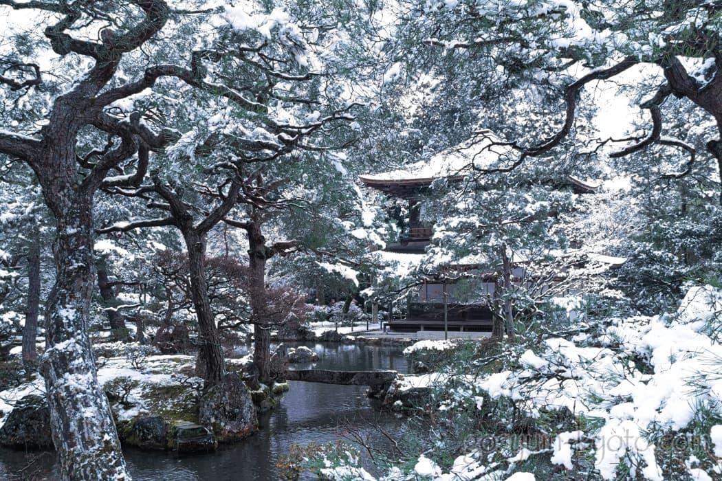 京都市左京区の銀閣寺の雪