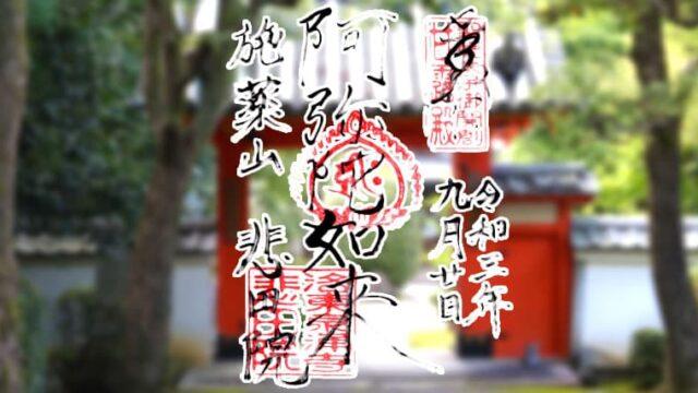 京都市東山区の悲田院の御朱印