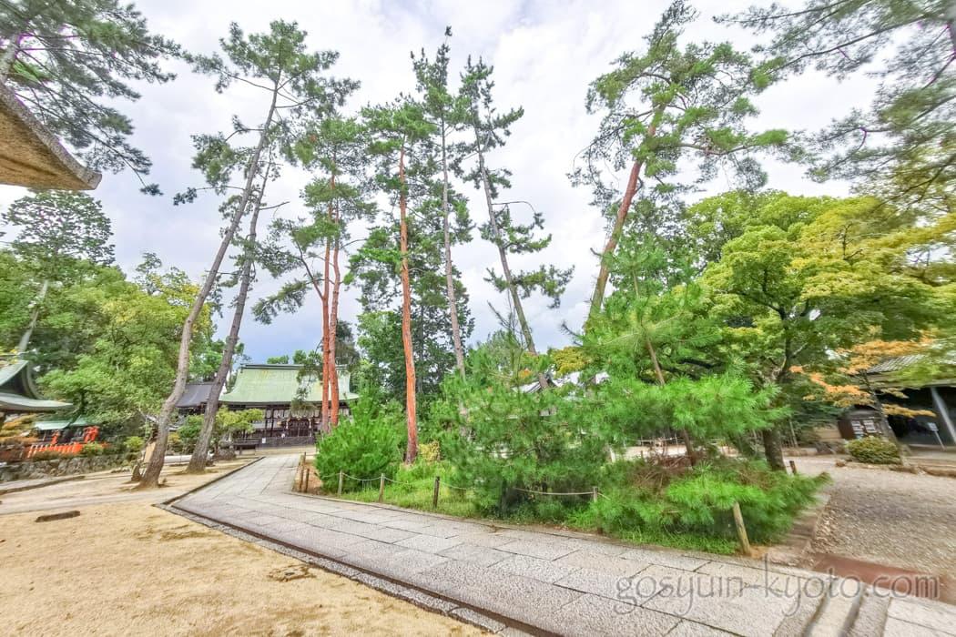京都市北区の今宮神社