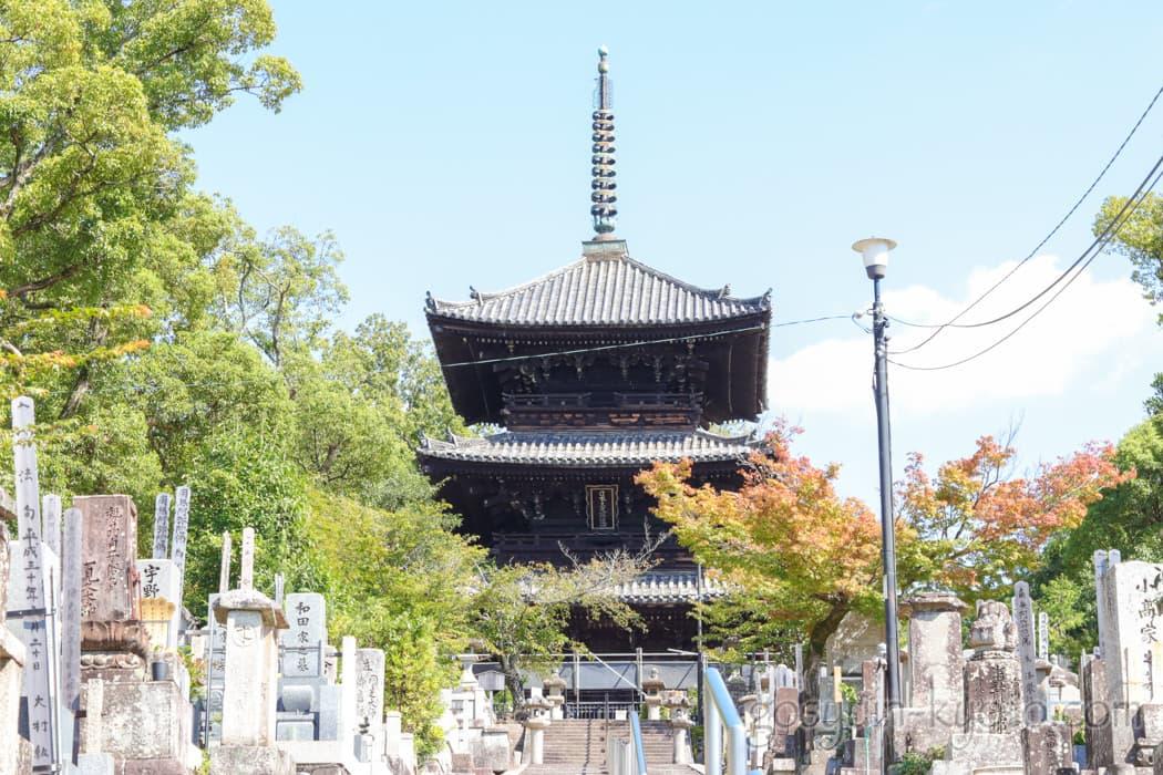 京都市左京区の金戒光明寺の三重塔