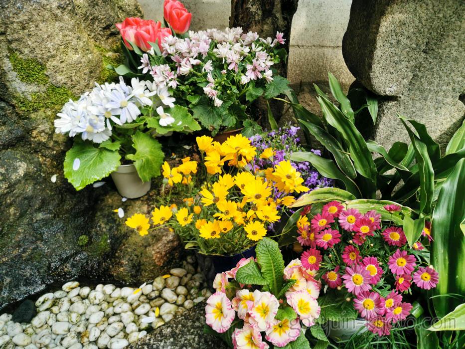 繁昌神社の手水場